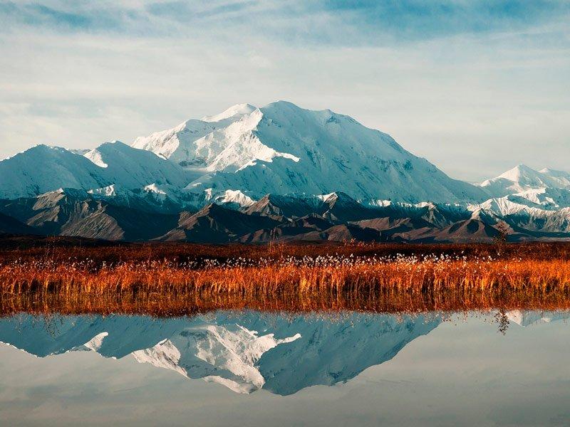 Un recorrido por el Parque Nacional Denali en Alaska
