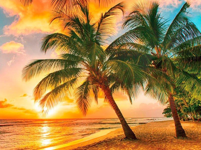 Las mejores playas de Barbados
